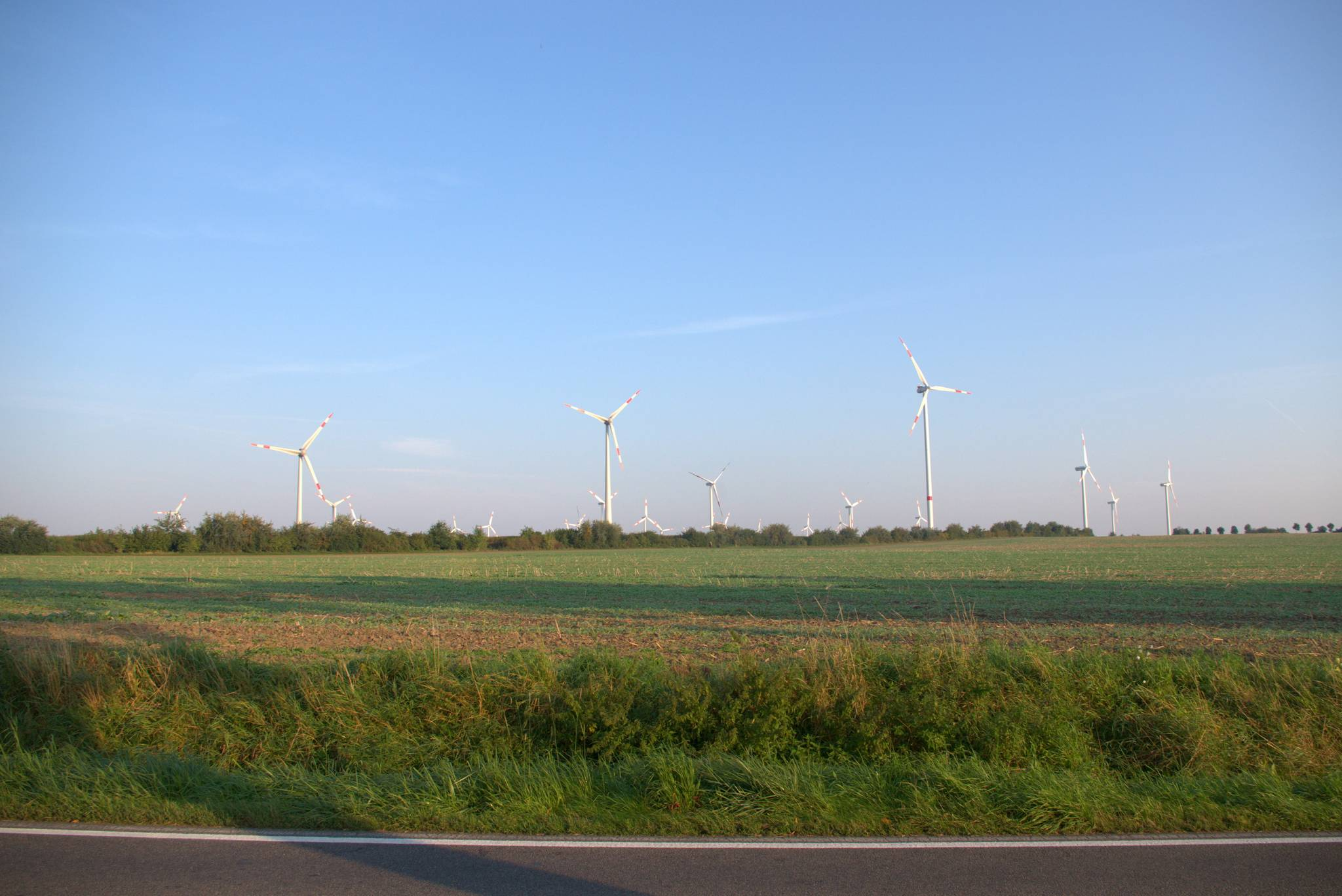 Niemcy nastukali tych wiatraków. Zawsze mi się to przypomina http://xkcd.com/556/