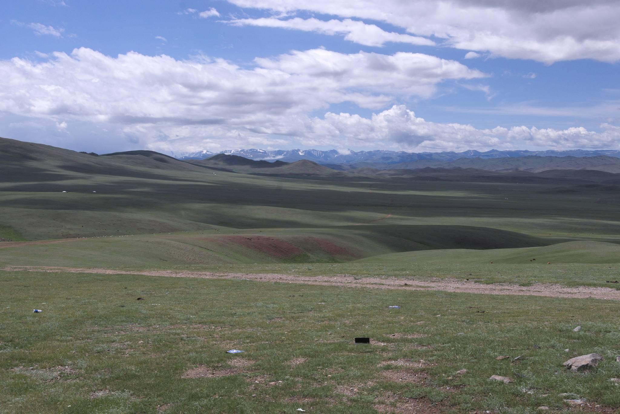 Przede mną wysokogóskie pastwiska