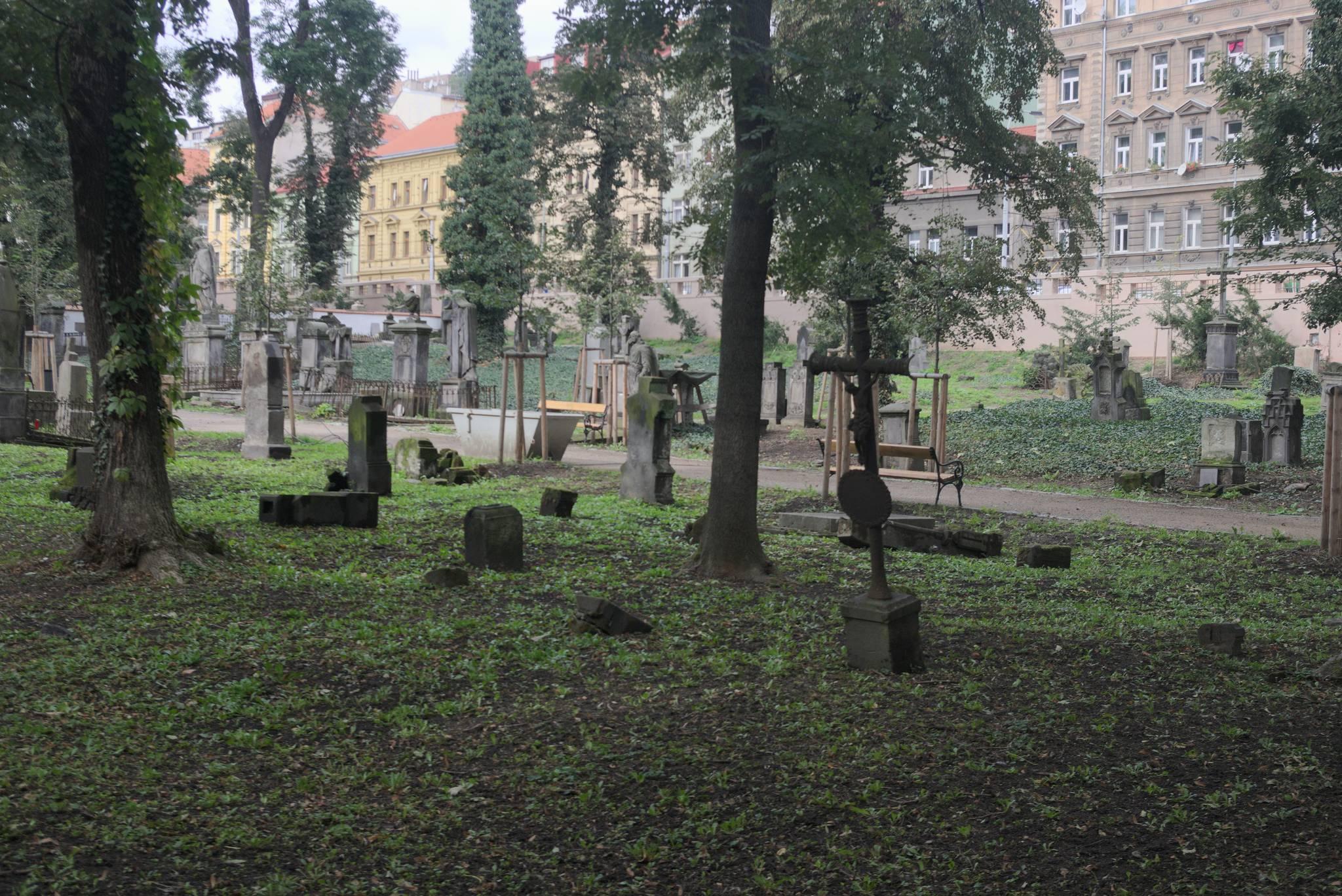 Stary cmentarz w centrum