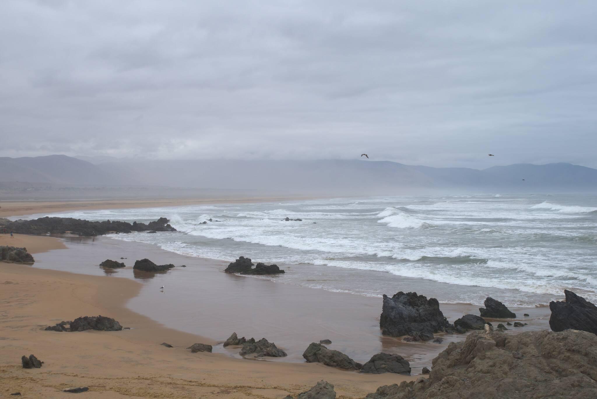 Dzika plaża?