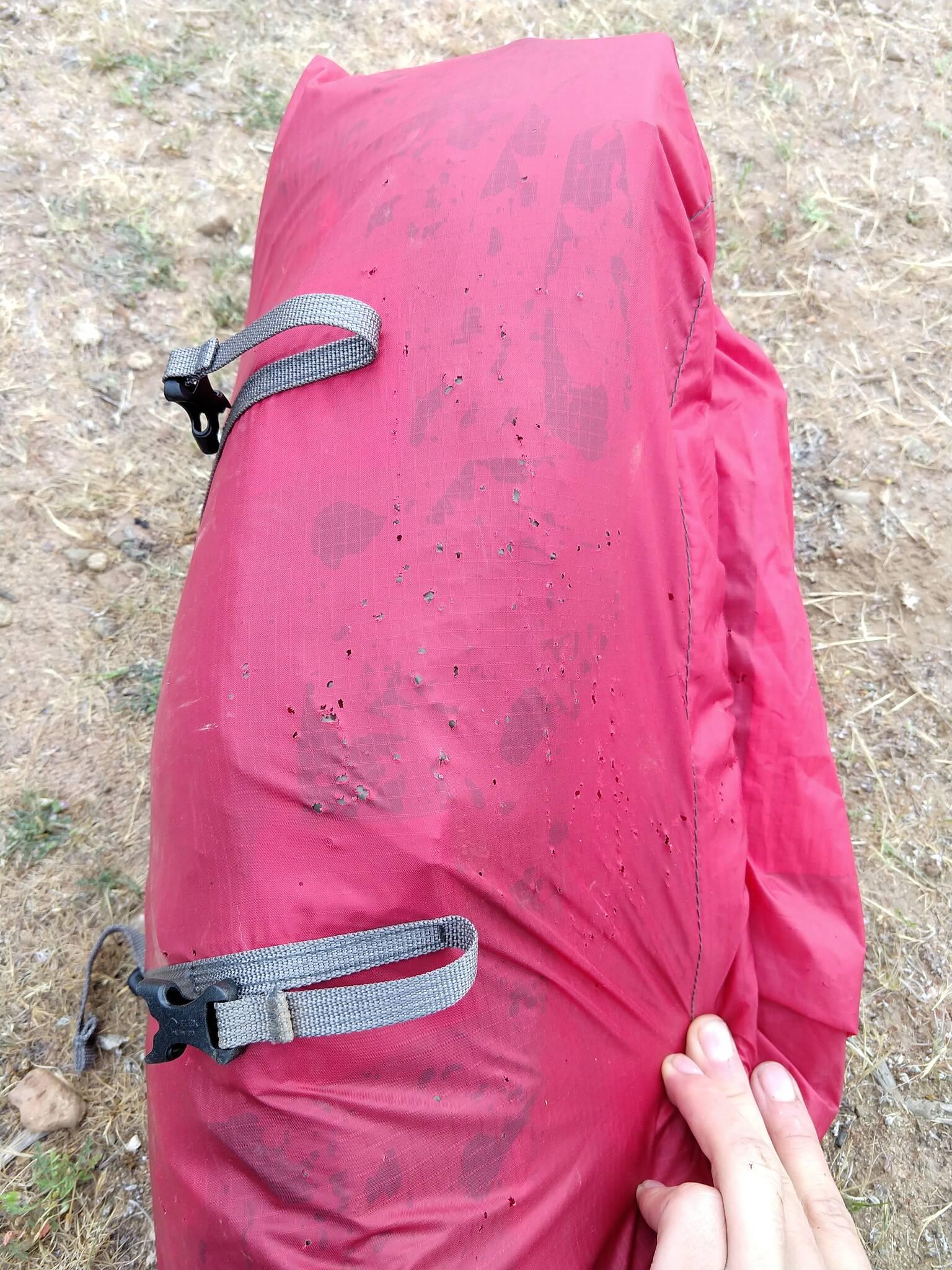 Mrówki wpieprzyły mi część pokrowca od namiotu i kawałek podłogi