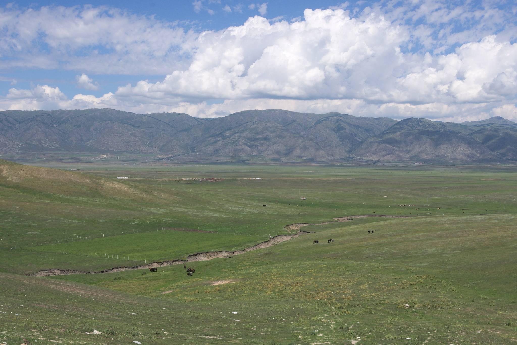 Pastwiska, poza terenem parku