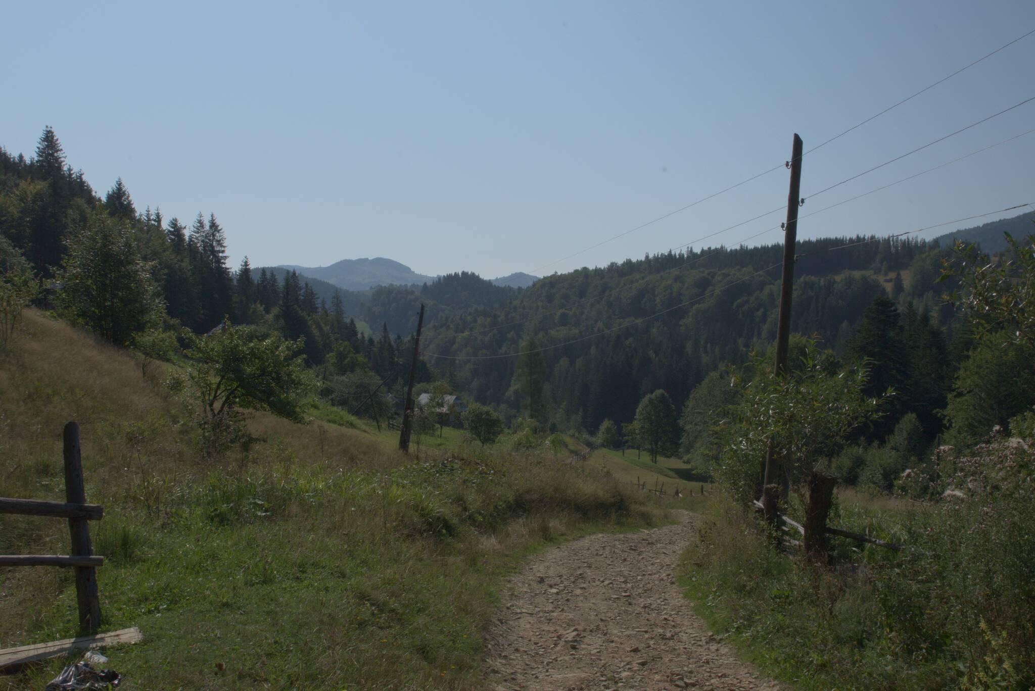 Nieco pokręcona droga pomiędzy wzgórzami i pastwiskami