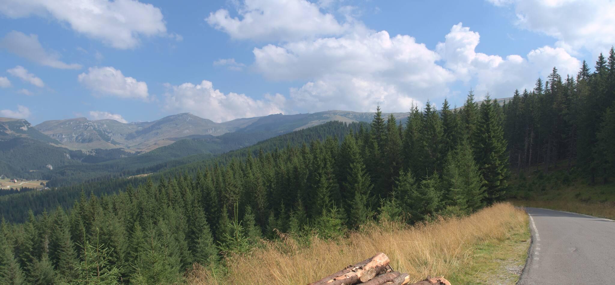 teraz nie ma chmur nad szczytami Bucegi, ale dzisiaj będą tu burze. Lecimy w dół