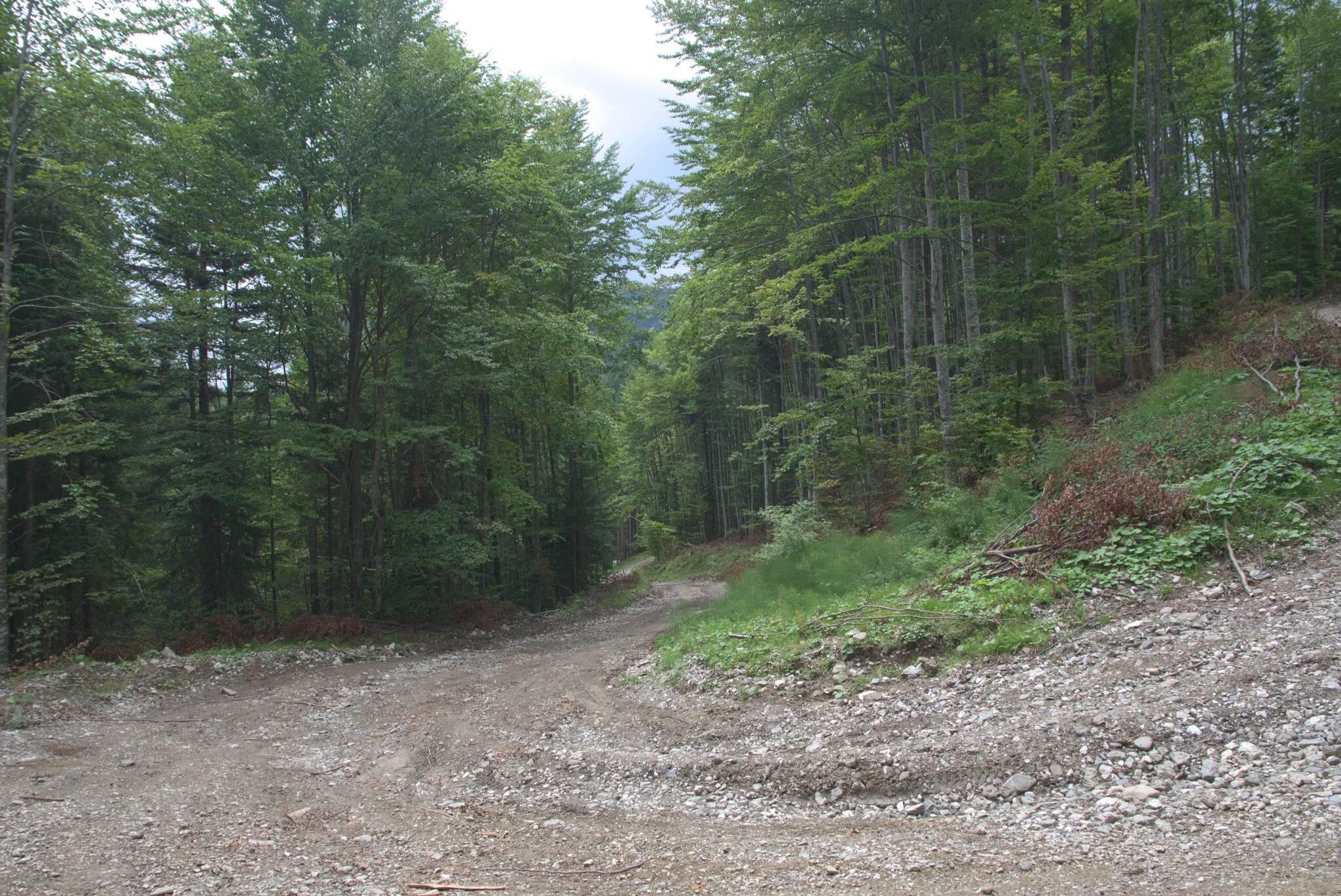 jedyna droga do Braszowa nie będąca krajówką, jest mocno nachylona przy końcówce