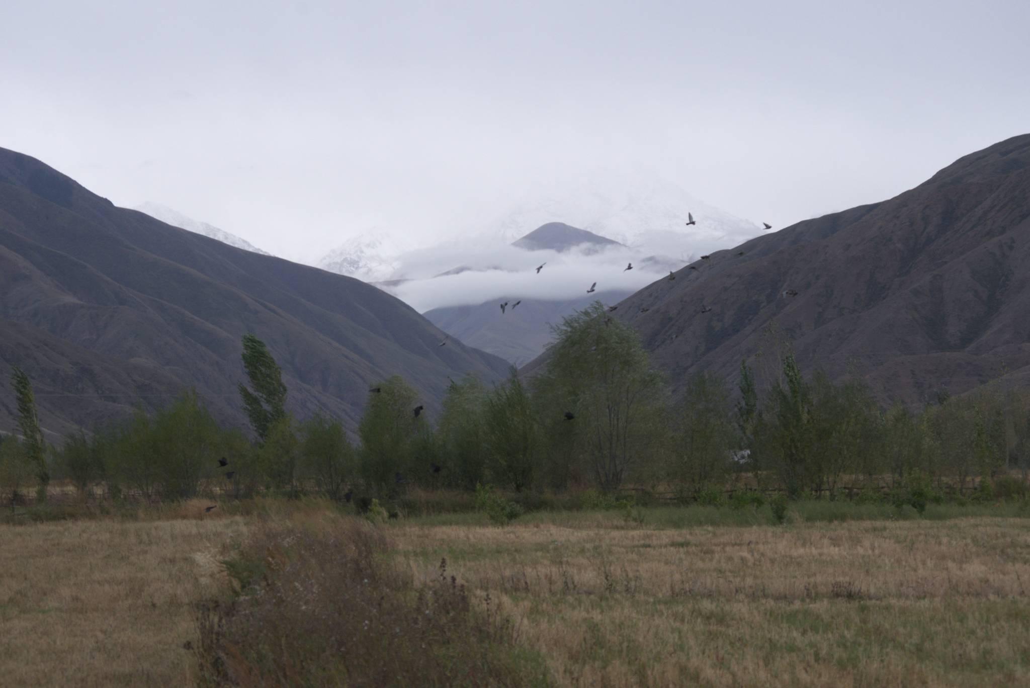 Wjazd pod przełęcz Tossor