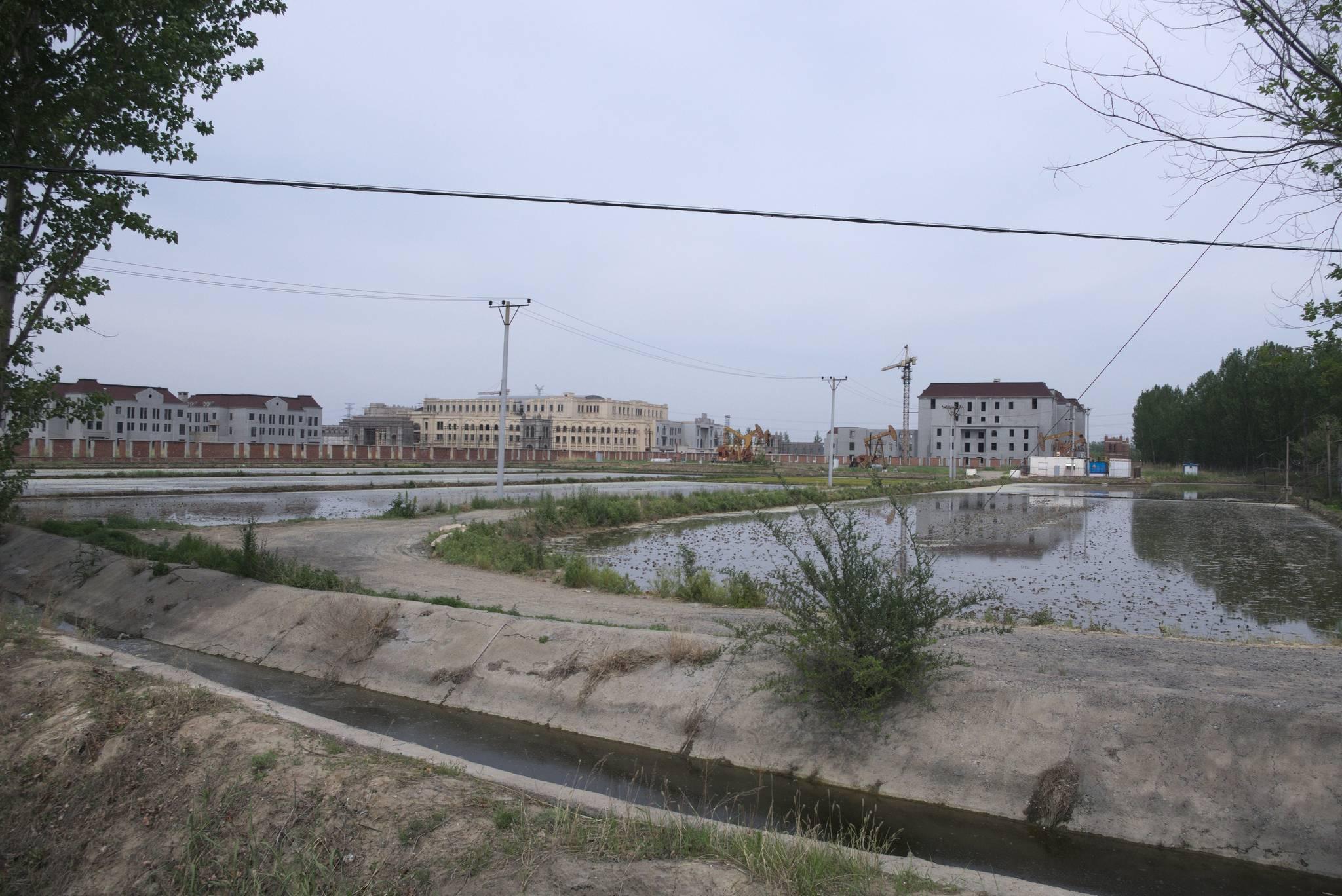 Niesamowita kombinacja. Plantacja ryżu, pole naftowe i budynki mieszkalne. Wot, Chiny.